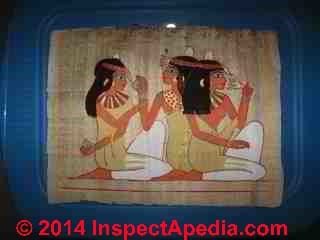 Papyrus painting with water damage for restorastion advice (C) InspectAPedia SB