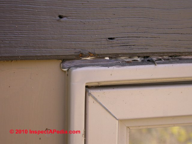 How to use exterior caulks sealants for buildings for Best exterior caulk for windows