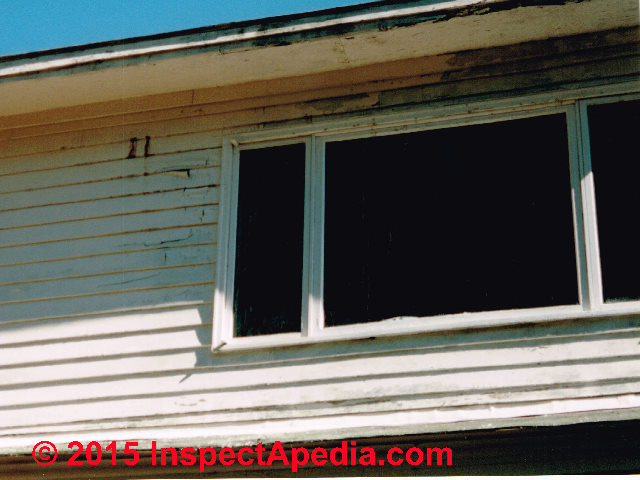 Causes Of Vinyl Siding Stains Algae Lichens Soot Other Markings