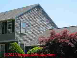 Vinyl siding with stains or moisture indicators (C) Daniel Friedman