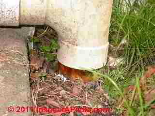 Clogged footing drain (C) Daniel Friedman