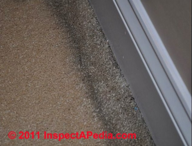 how to get black stains out of carpet - 28 images - lizzy ...
