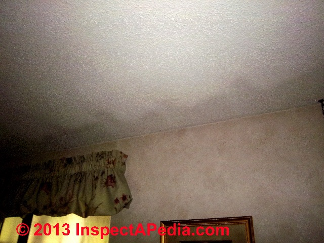 Dark Ceiling Stains How To Recognize Amp Diagnose Thermal