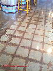 Concrete floor cleaned & sealed with a clear finish leving marks of prior tile installation (C) Daniel Friedman