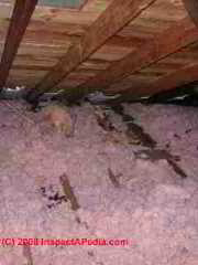 Chopped fiberglass insulation in a modern attic