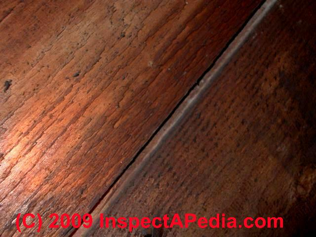 Wood floor types damage diagnosis repair damaged