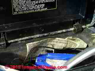Car mold severe, beyond cleaning (C) Daniel Friedman