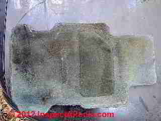 Moldy car floor mat (C) D Friedman