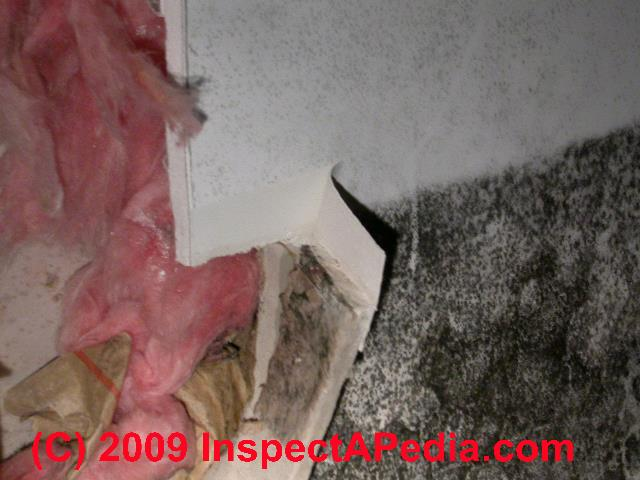 how to stop mould on silastic