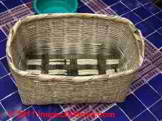 Photo of mold on a woven basket  (C) Daniel Friedman