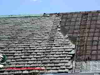 Slate roof repair and access ladders (C) Daniel Friedman