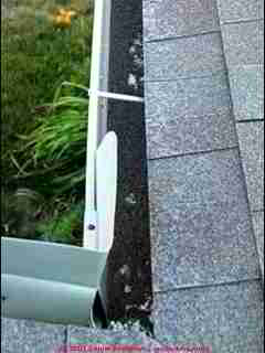 Photograph of Photograph of roof shingle mineral granules in the gutter due to hail damage