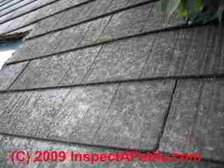 Wood fiber cement roofing (C) Daniel Friedman