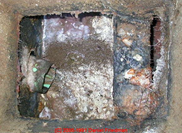 Septic Tank Flooding Back Flooded Septic Tank Diagnosis