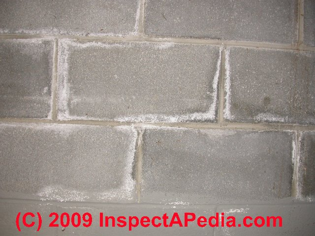 how to remove mildew stains from white exterior brick apps