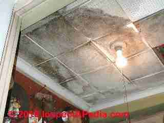Asbestos containing acoustic ceiling tiles