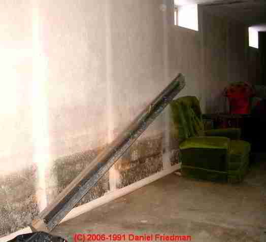 Building Mold Inspection, Mold Testing, Mold Cleanup