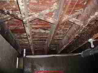 Photograph of moldy basement ceiling before cleaning.