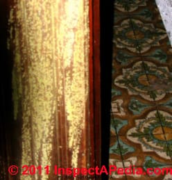 Yellow mold on building wall paneling - Meruliporia incrassata