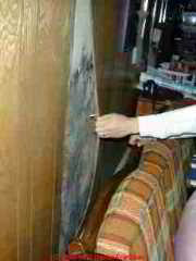 Mold behind basement paneling can be easy to find if you follow the water.