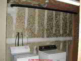 Mold on basement laundry room wall - Daniel Friedman 04-11-01