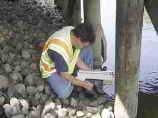 Micro drilling test on a piling using the IML RESI F300-S - USDA Forest Products Laboratory report