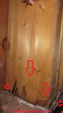 Building Wall Or Window Leak Diagnosis How To Find The