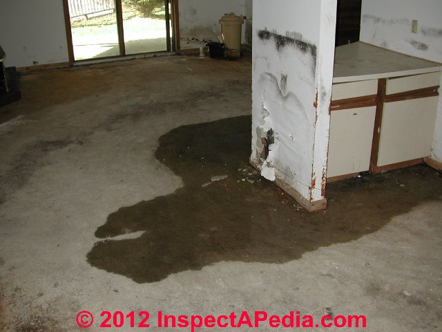 Wet Basement Flooded Building Salvage Cleanout Amp Dry Out