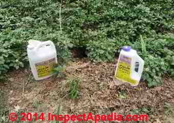 Ground hog hole & two ground hog repellent products under trial (C) Daniel Friedman