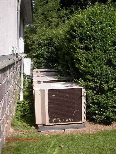 Photograph Of An Overgrown Air Conditioning Condenser