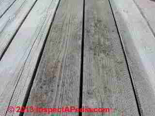 Deck board gaps on a well-drained older wood deck surface (C) Daniel Friedman