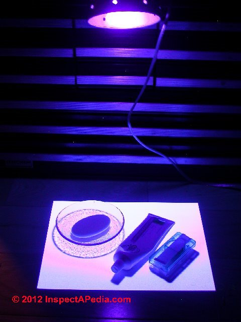 How To Buy Amp Use A Black Light Uv Light Woods Lamp For
