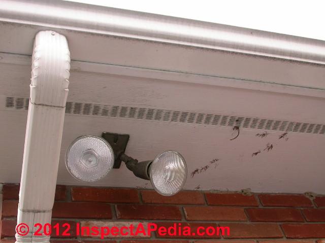 Exterior Lighting Installation Inspection