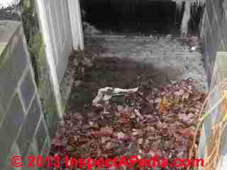Debris and leaves easily clog this basement walkout stairwell drain (C) Daniel Friedman