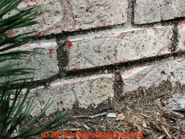 Paint Remover For Brick Exterior Part - 21: Paint Coating On Brick Foundation Wall (C) Daniel Friedman