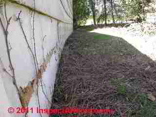 Masonite Louisiana Pacific Forestex Hardboard Siding Failures Inspection Defects Repairs