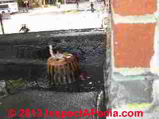Overflowing at low slope roof drain floods apartment (C) InspectApedia BMR
