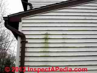 Damaged vinyl siding (C) Daniel Friedman