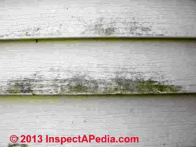 Algae On House Siding Architectural Designs