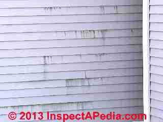 Causes Of Vinyl Siding Stains Algae Lichens Soot Other