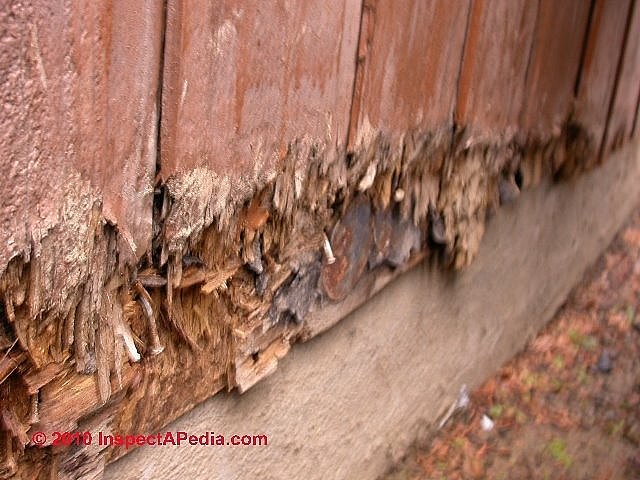 Rain Splash Up Or Lawn Sprinkler Damage To Wood Siding On