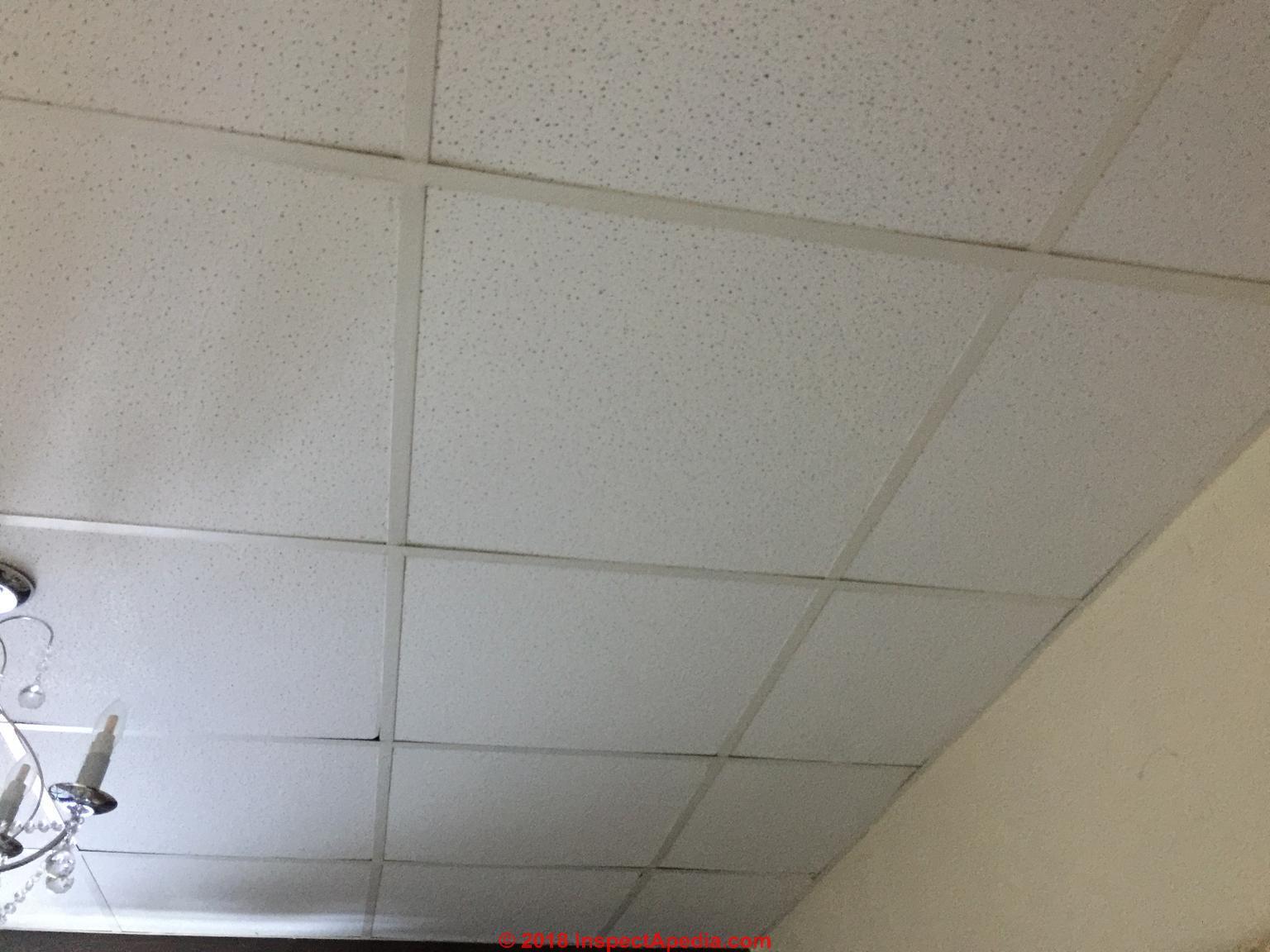 Modern Ceiling Tile 2007 Won T Contain Asbestos C Inspectapdedia Auris