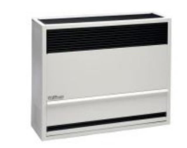 Wall Mounted Furnaces Amp Heaters Inspection