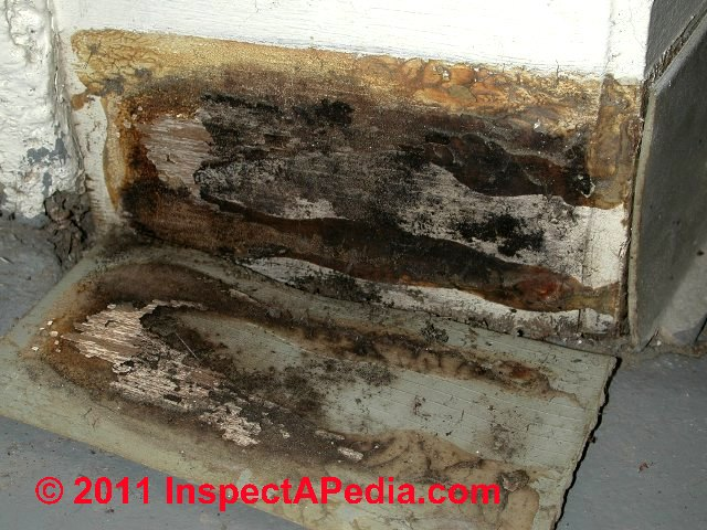 Auto forward to correct web page at for Water damage baseboard bathroom