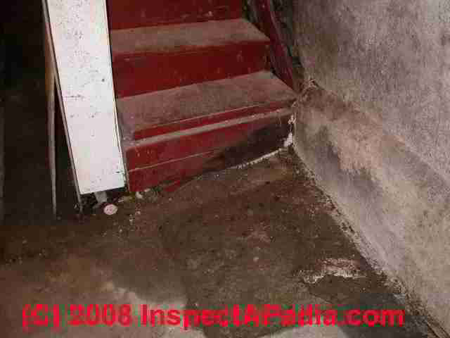 Water Stains On Basement Stair (C) Daniel Friedman