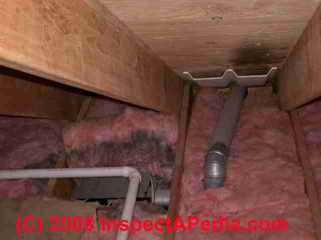 Mold over bath vent fan exit (C) Daniel Friedman ...