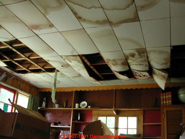 how to prevent building mold contamination correct the causes of mold