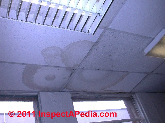 Suspended Ceiling With Leak Stains Daniel Friedman