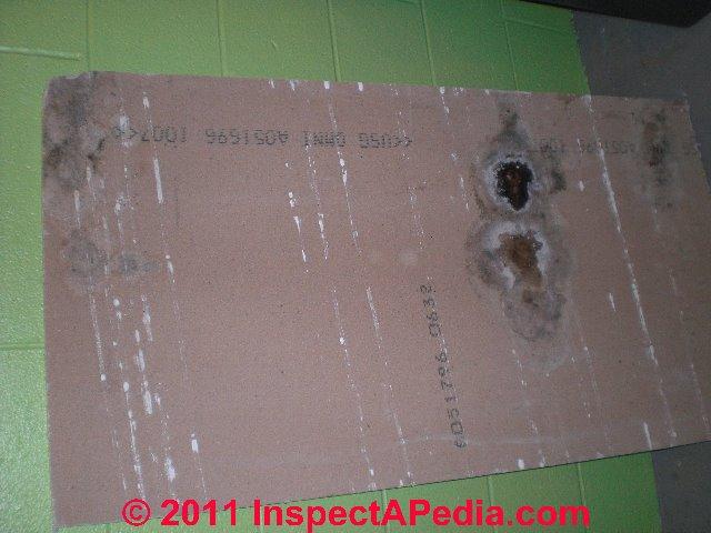 white mold on pine paneling is hard to see unless illuminaged
