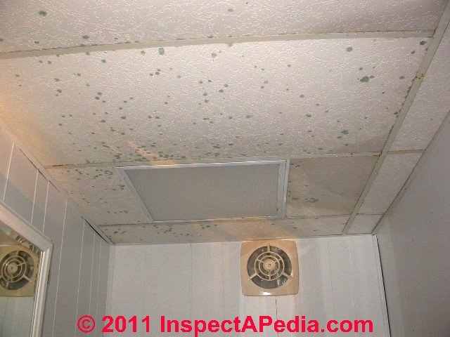 Suspended Ceilings Install Diagnose Repair Insulate R